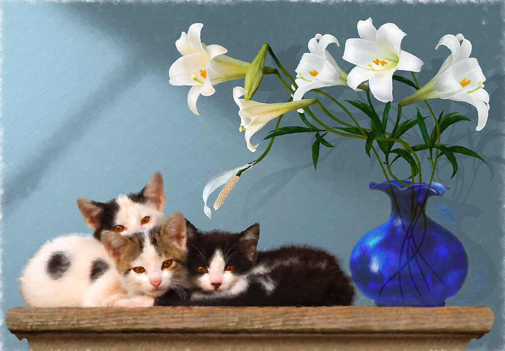 Cats On A Shelf by Hal Smith