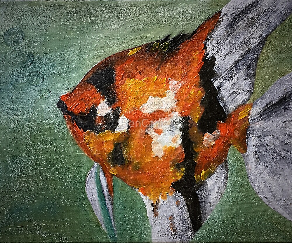 Angel Fish  by RenCamz1