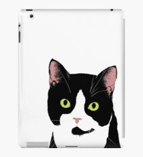 Desmond The Cat iPad Case/Skin