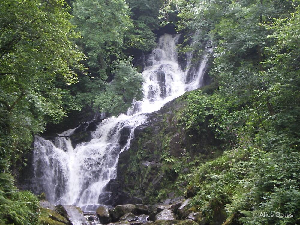 Waterfall by Alice Oates