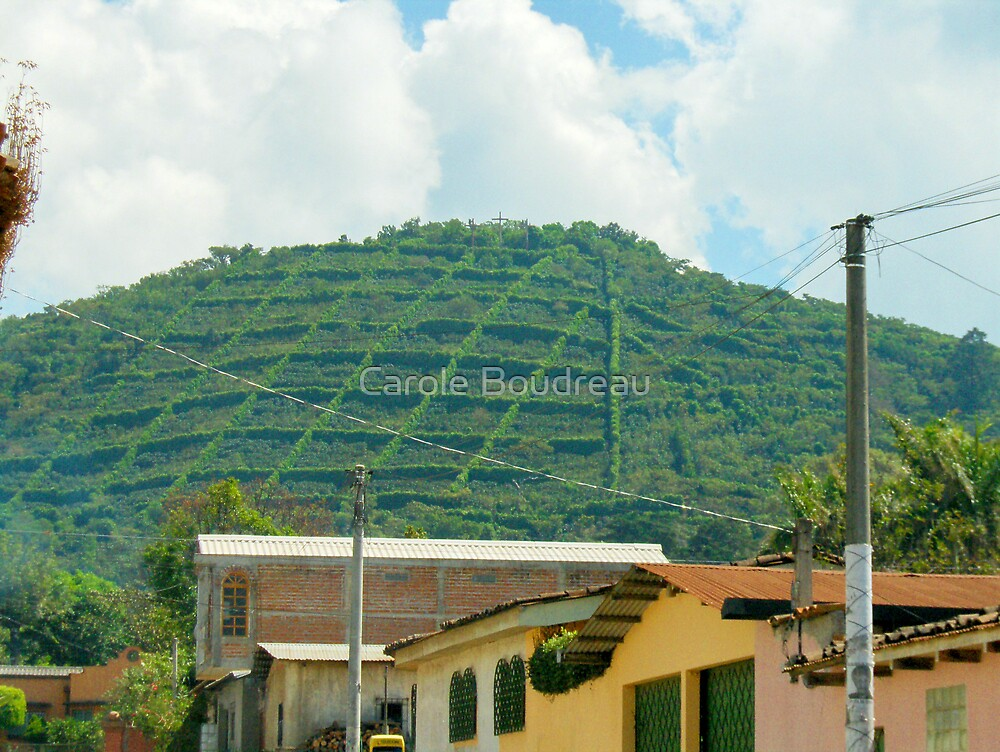 "El Salvador #3 - Village view of the ""Gourmet"" coffee plantation. by Carole Boudreau"