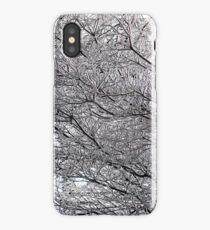 ice maze iPhone Case