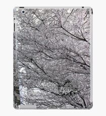ice maze iPad Case/Skin