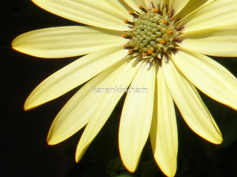 Sunshine by karenkirkham