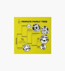Primate Family Tree Art Board