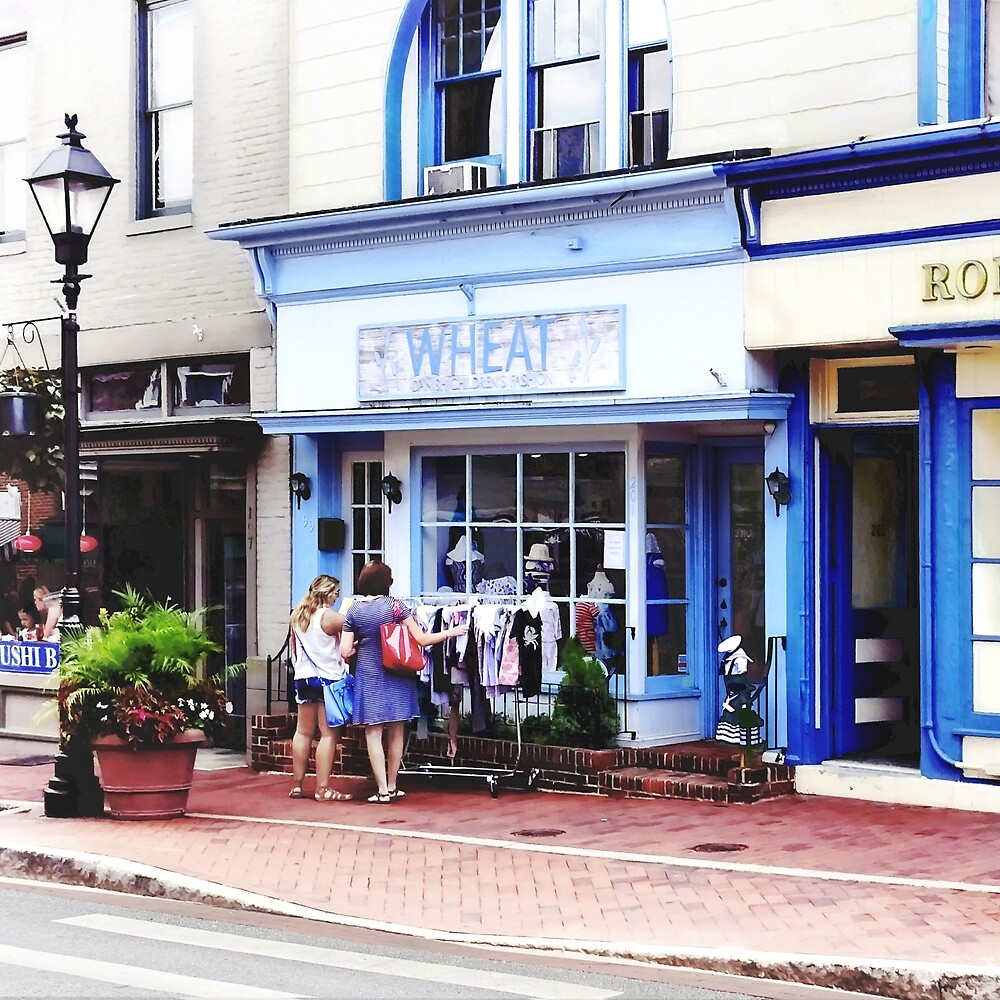 Annapolis MD - Shopping on Main Street by Susan Savad