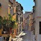 Streets Of Arles  by Lanis Rossi