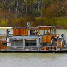 Paddlesteaming the River Murray by indiafrank