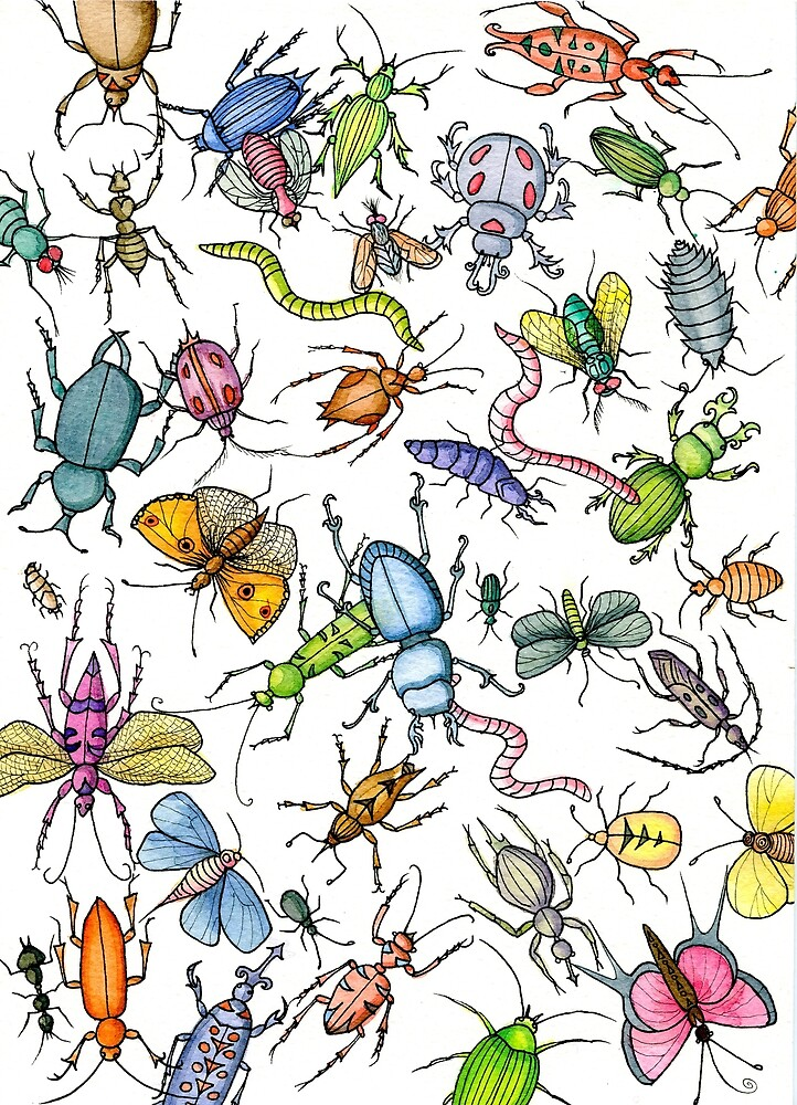 Colorful insects by Audrey Robitaille