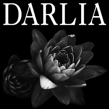 darlia - petals by livethroughthis