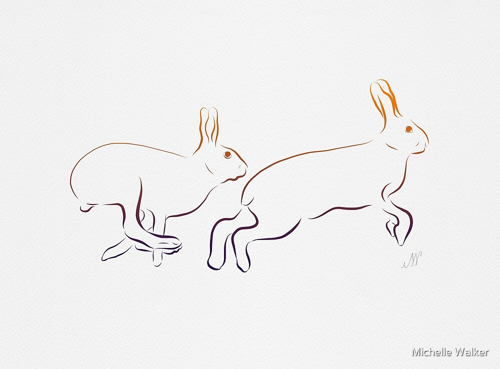 Beautiful hares by Michelle Walker