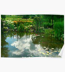 Natures Garden & Reflections Poster