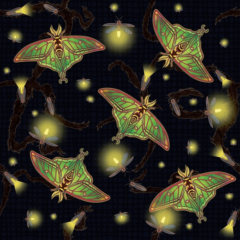 Spanish Luna Moths & Fireflies by sjmcgrath