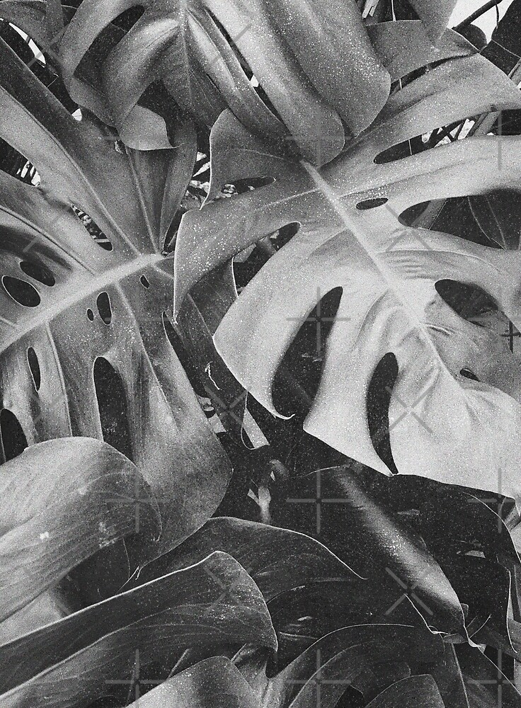 Tropical Plant Print II by meandthemoon