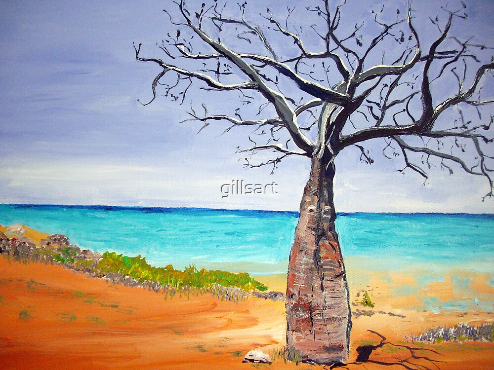 Broome Boab tree by gillsart