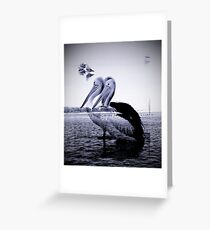 Pelican Siesta Sea Blue  Greeting Card