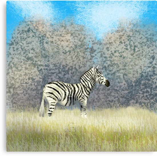 Zebra  by thebigG2005
