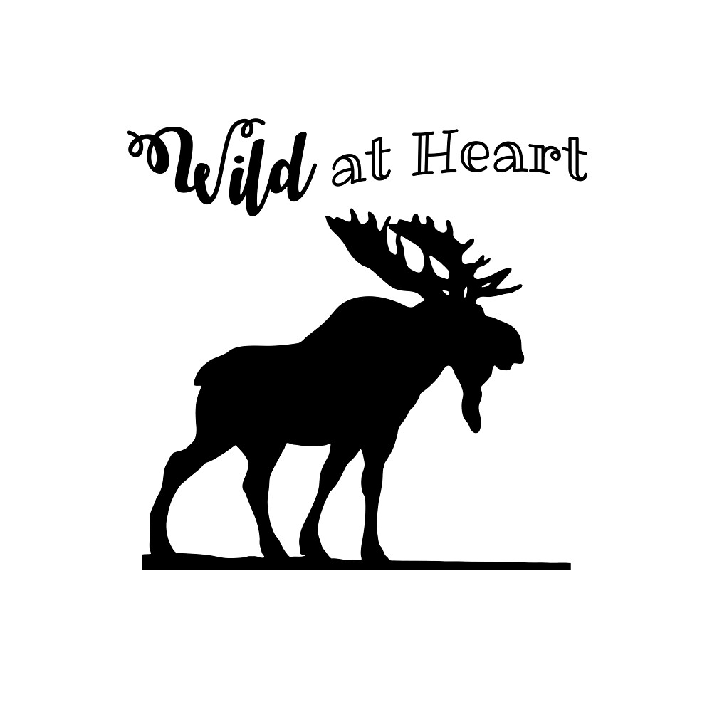 Wild at Heart-Moose on White Background by Lainey1978