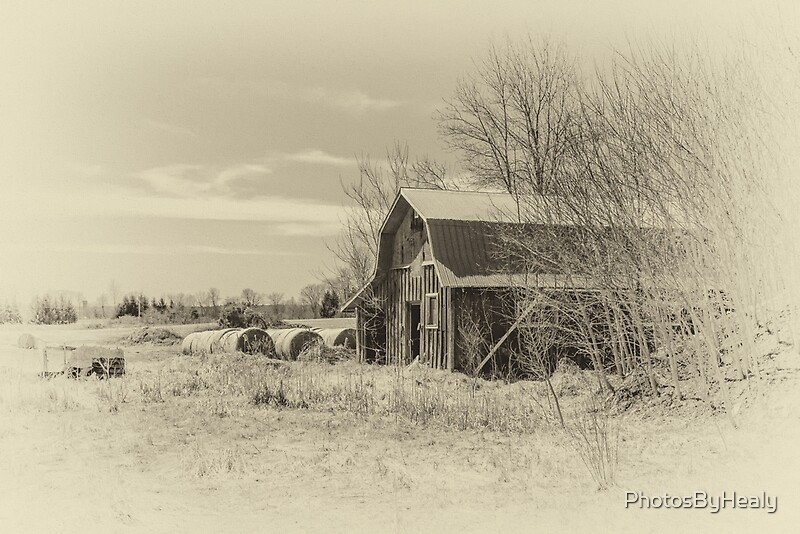 The barn - sepia by Photos by Healy