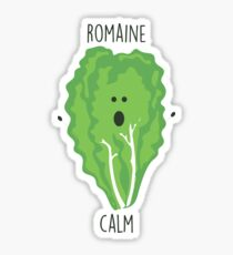 Romaine Calm // Happy Little Owl Collection Sticker