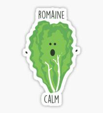 Romaine Calm // Glückliche kleine Eulen-Sammlung Sticker