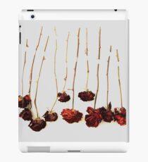 Ten Roses iPad Case/Skin