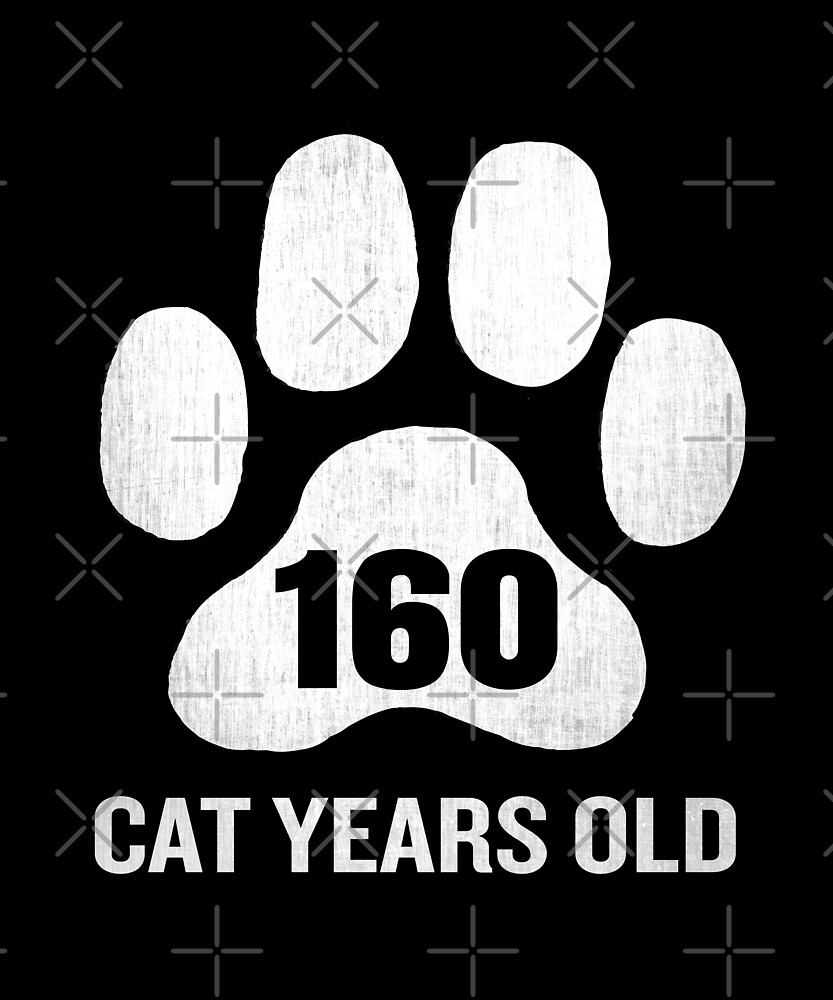 160 Cat Years Old Funny 40th Birthday Gag Gift Paw by SpecialtyGifts