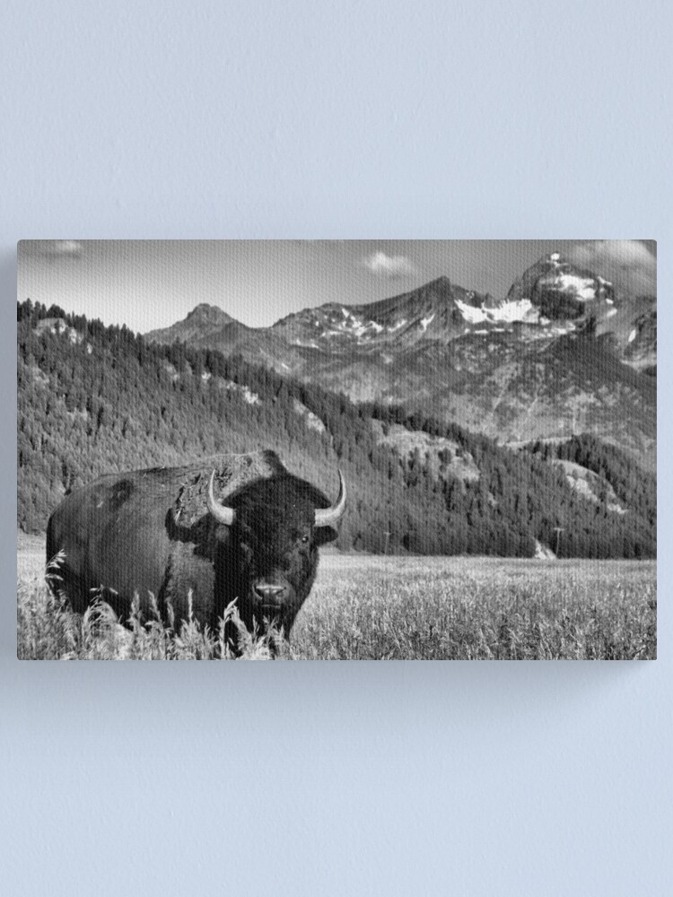 Alternate view of Welcome to Wyoming Canvas Print