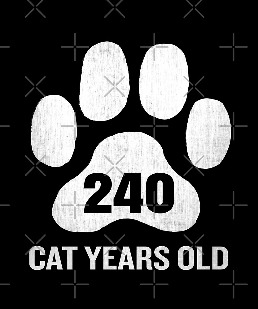 240 Cat Years Old Funny 60th Birthday Gag Gift Paw by SpecialtyGifts