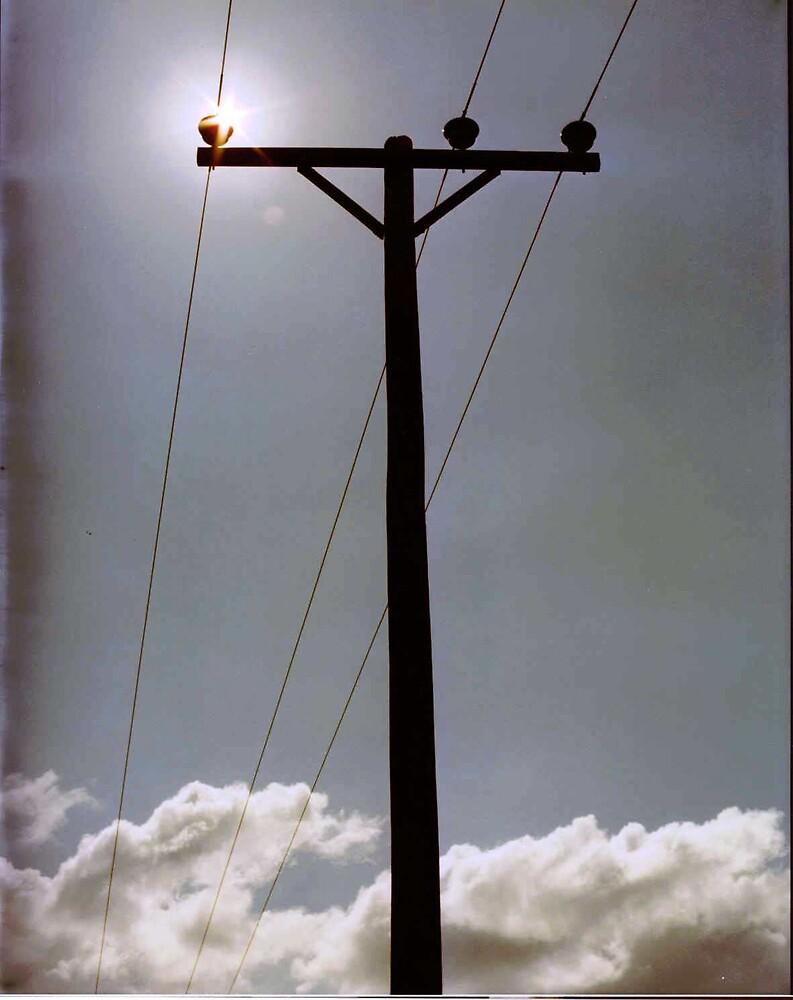 Rural Survival by Jim DeMore