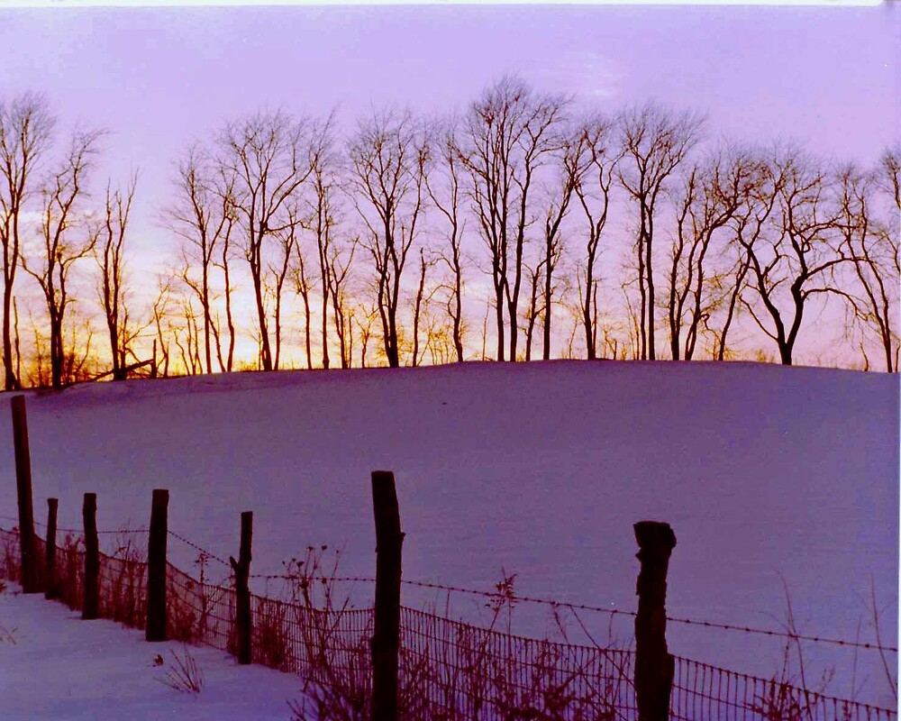 Solice in the wintertime by Jim DeMore