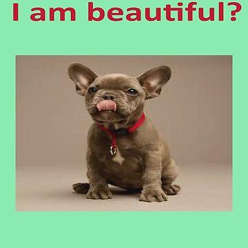 sou bonito? by gilsonsoliveira
