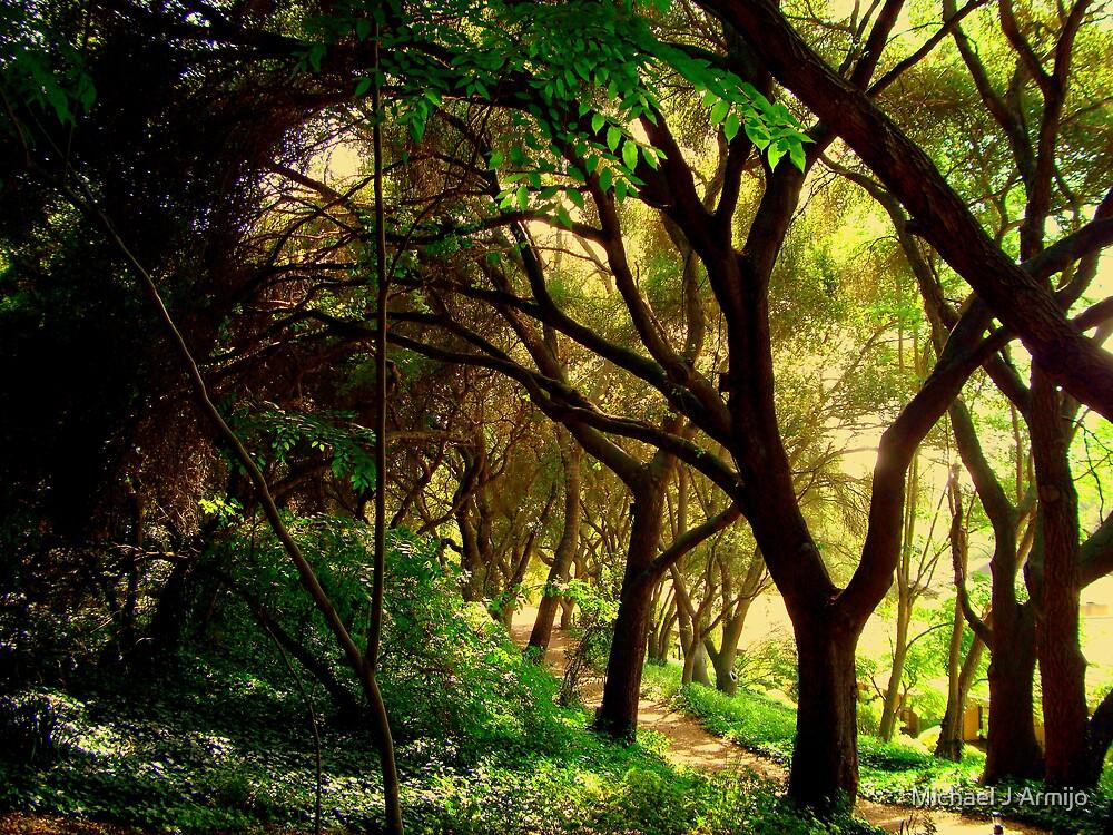 Take My Path by Michael J Armijo