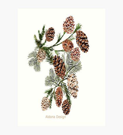 Pine cones ( 554 Views) Art Print