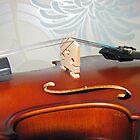 Over the bridge - Edge-on view of Violin by SunriseRose