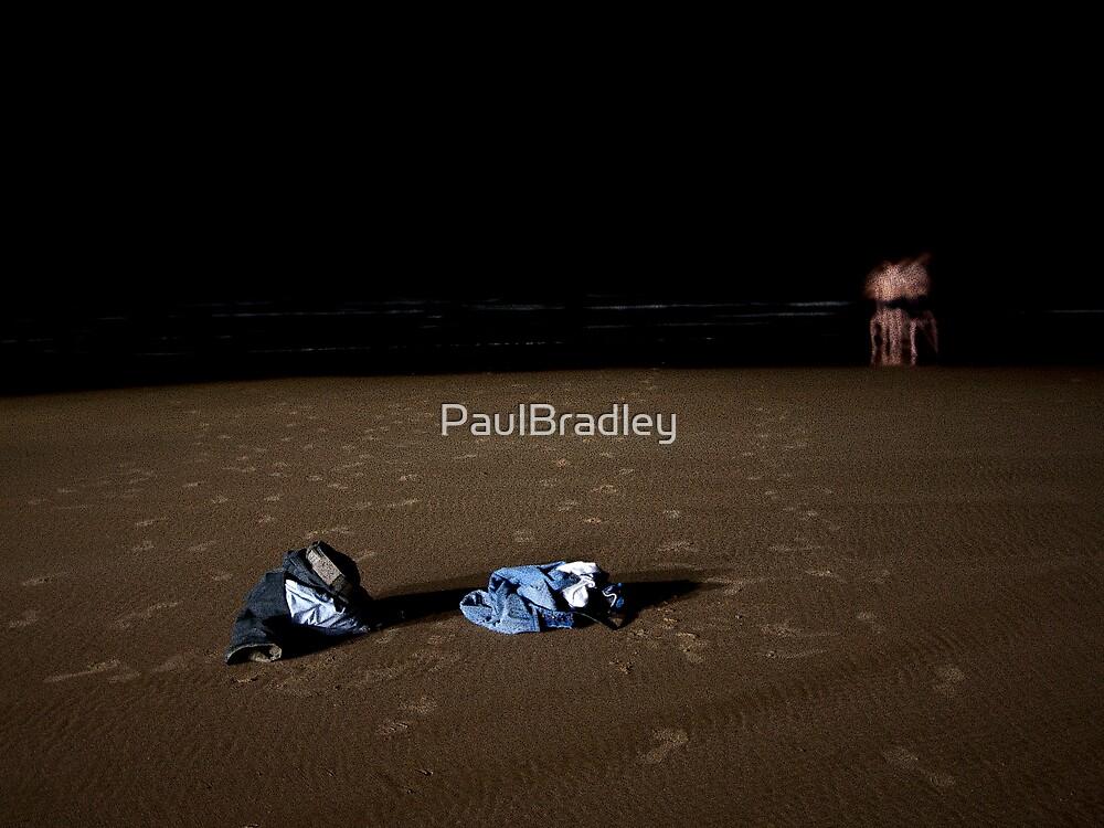 Night Swimmers (II) by PaulBradley