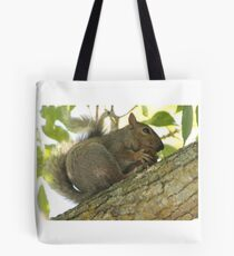 Squirrel in Ash Tree with Walnut Tote Bag