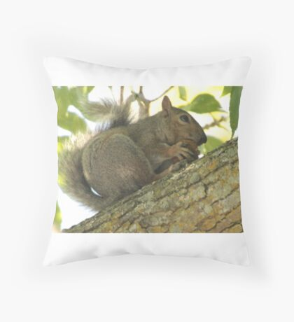 Squirrel in Ash Tree with Walnut Throw Pillow
