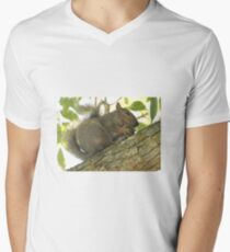 Squirrel in Ash Tree with Walnut Men's V-Neck T-Shirt