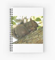 Squirrel in Ash Tree with Walnut Spiral Notebook