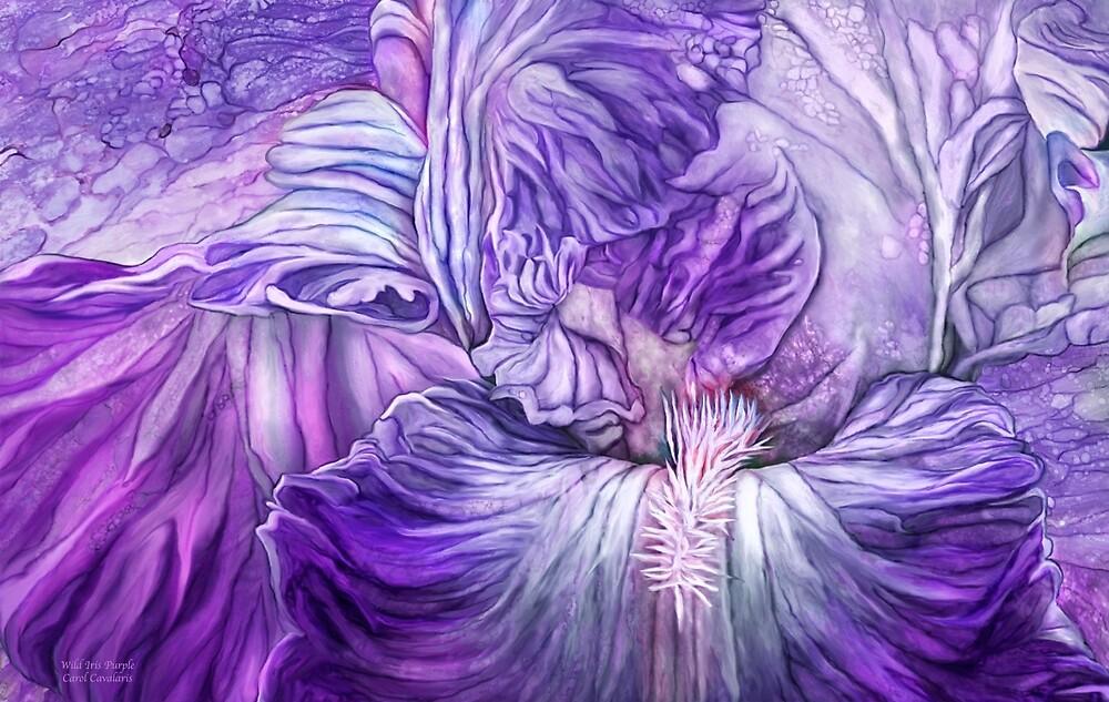 Wild Iris Purple by Carol  Cavalaris