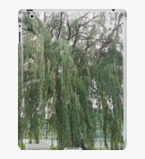 Willow. iPad Case/Skin
