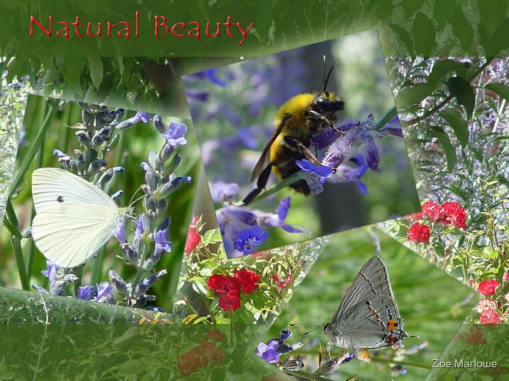 Natural Beauty by Zoe Marlowe
