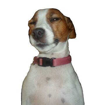 My Gay Frikin Dog by Danklin