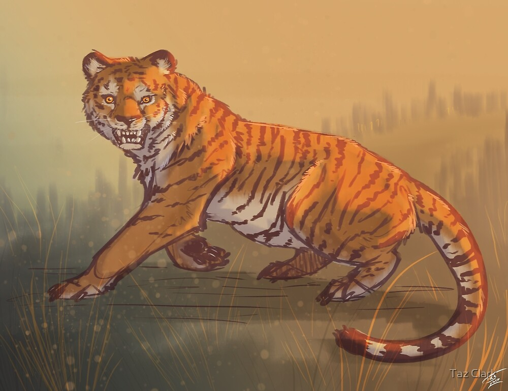 tiger by lady-darkstreak