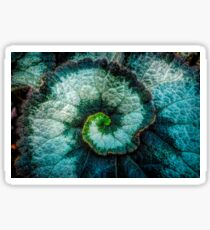 Macro close up swirl leaf Sticker