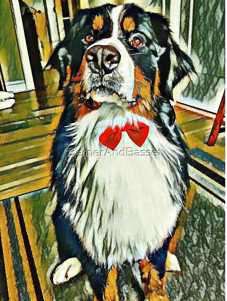 Bernese Mountain Dog Bow Tie by BernerAndBasset