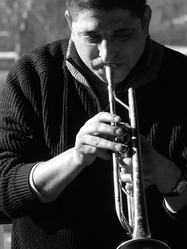 Trumpeter by Jo Byrne