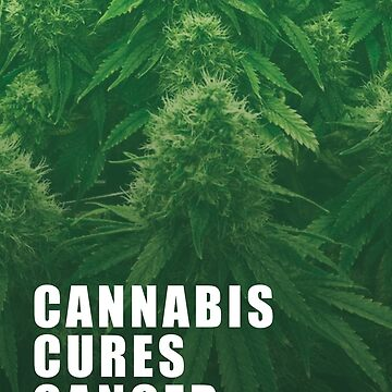 Cannabis cures cancer by DaianeRansolin
