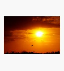 Everglades Winter Sunset Photographic Print